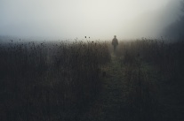 man wandering in nature